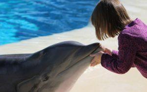 Kind mit Delfin