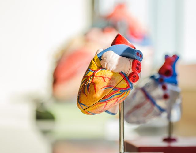 Herzwochen